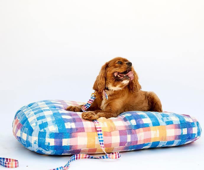 kip and co dog bed
