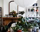 The Plant Society's Sydney outpost offers stunning accommodation for green thumbs
