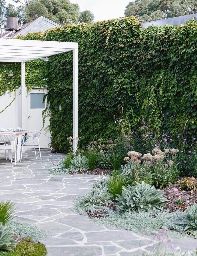 This meandering path is lined with stunning, low-maintenance Australian natives. The varying textures and heights of the plants help to create greater visual interest in this backyard. *Image: Jonathan Van Der Knaap / bauersyndication.com.au*