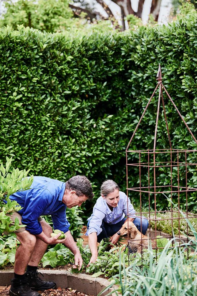 Derek and Sus in the garden with Beans. Over the years, they have thought about expanding their rose farm, but for the time being, they enjoy being able to work together and do everything themselves.
