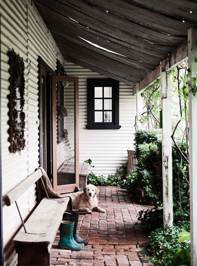 "The [verandah](https://www.homestolove.com.au/country-verandahs-13365|target=""_blank"") is one of Georgie's favourite places to soak up the sunshine."