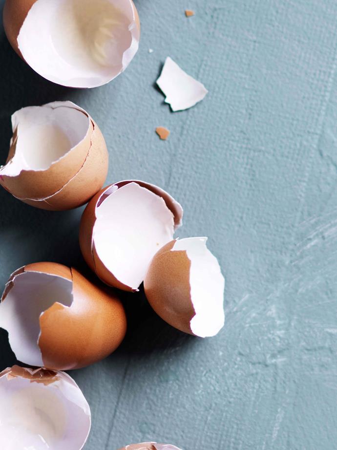 Empty shells make great butterfly egg trap.