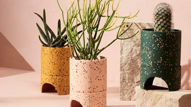 15 pretty pots to house your indoor plant collection