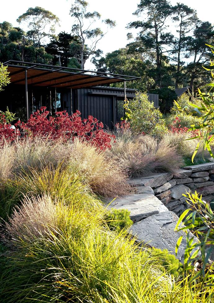 Walls of stacked stone from the sunken sitting area beside the lake. Fiona Brockhoff incorporated Tussocks and Banksia spinulosa 'Birthday Candles' soften the edge of the retaining wall.
