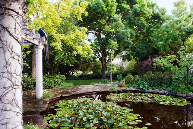*Photograph: Brigid Arnott | Story: Australian House & Garden*