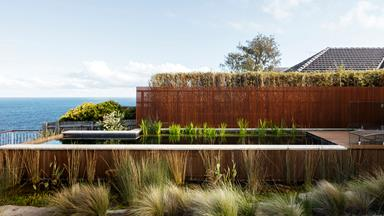 A spectacular clifftop garden in Sydney's east