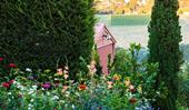 How to create a low-allergen garden