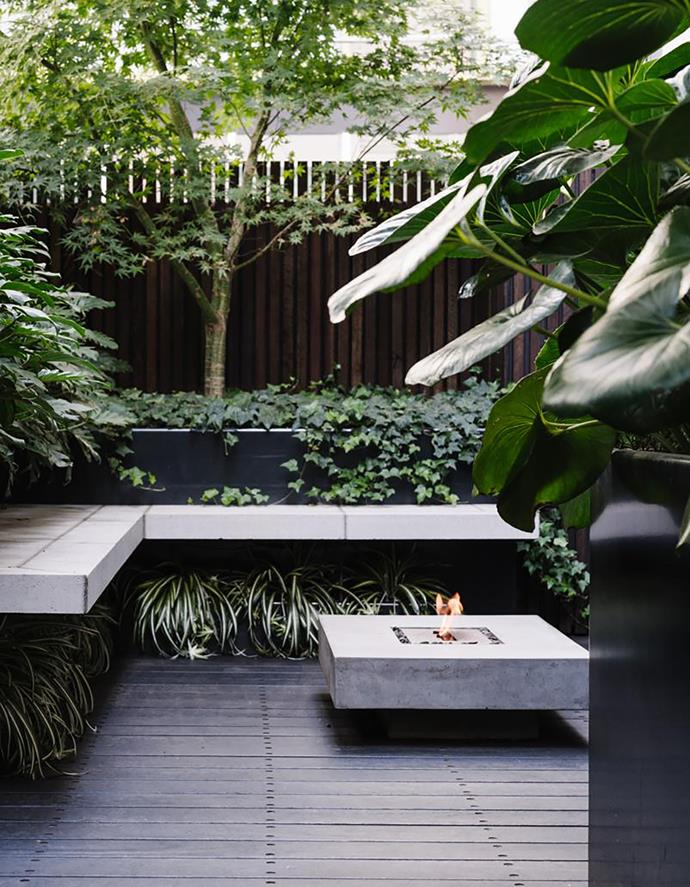 "An [outdoor fireplace](https://www.homestolove.com.au/best-fire-pits-under-100-6516|target=""_blank"") ensures the garden remains a destination, even in the cooler months. The cantilevered L-shaped bench, clad in limestone, is 2.7x1.7m, offering abundant seating around the warmth. Plantings here include a pretty Japanese maple (Acer palmatum) underplanted with English ivy (Hedera helix 'Pittsburgh') while under the bench is a thick fringe of spider plant (Chlorophytum comosum 'Variegatum'). The Venice fireplace, made from lightweight concrete and fuelled with bioethanol, is from Iota Australia."