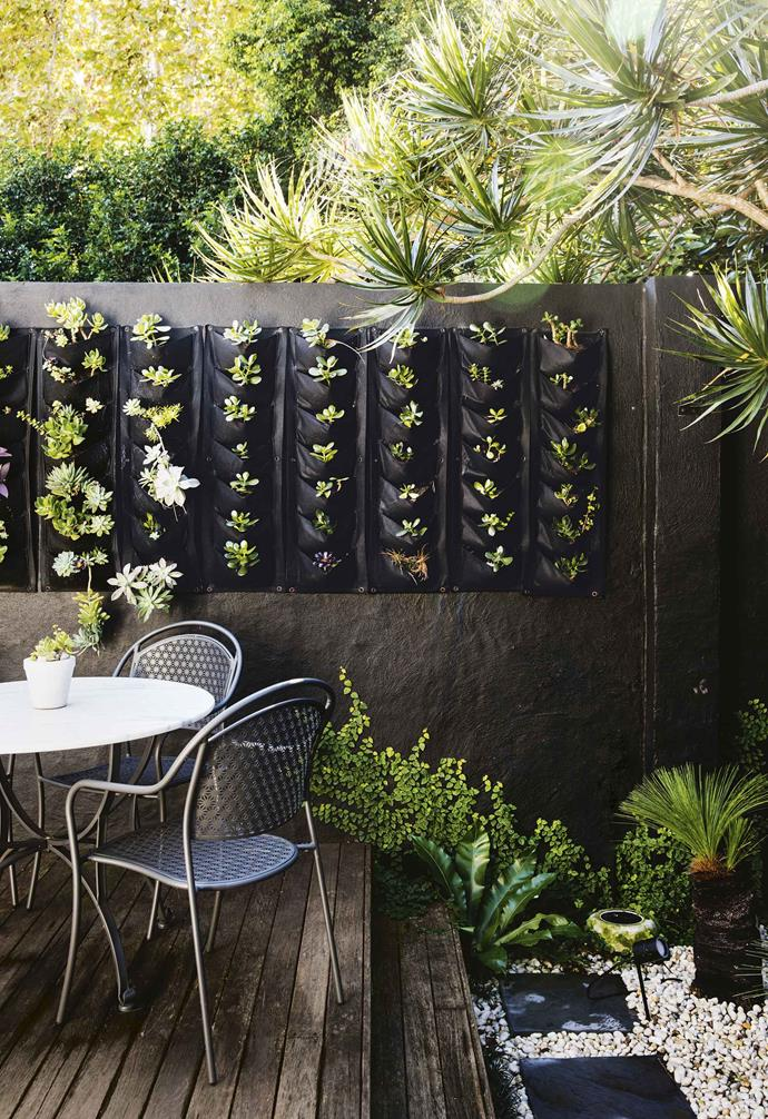 The vertical garden in this courtyard softens up the charcoal wall.