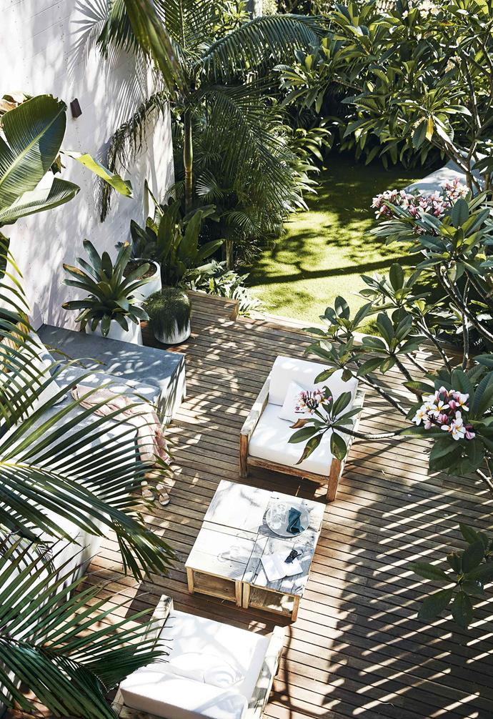 """The backyard of this [Bondi duplex](https://www.homestolove.com.au/duplex-home-renovation-19533 target=""""_blank"""") has been filled with lush plantings to convey a sense of space."""