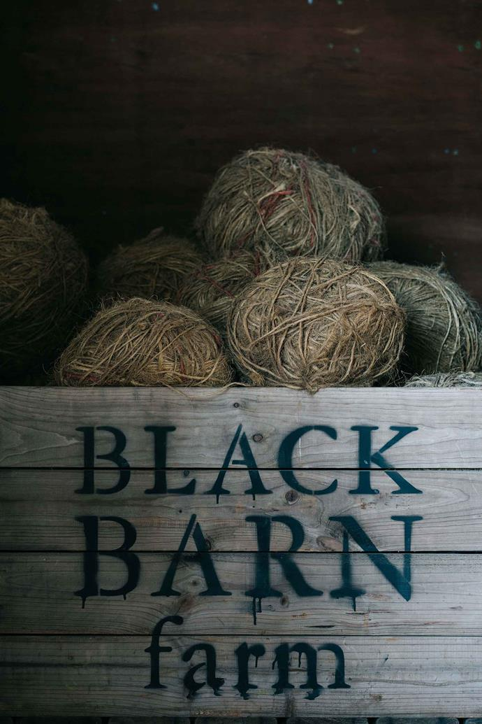 Black Barn Farm's own apple orchard will ready in 2021.