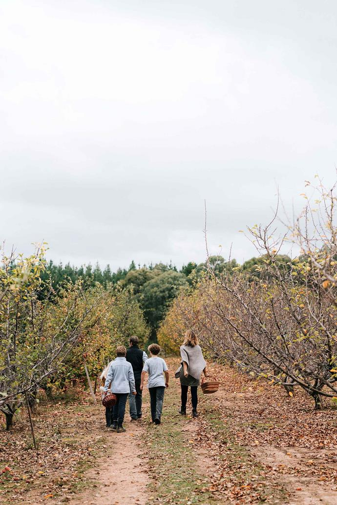 The family off to pick apples in the orchard they are leasing.