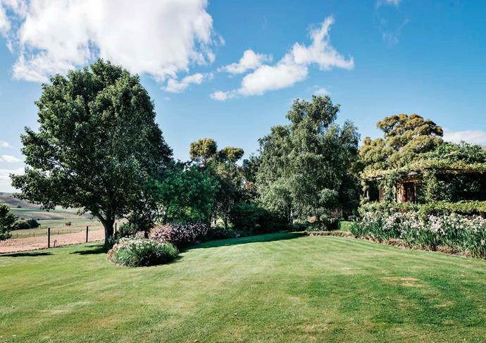 Sweeping lawns with mature elms frame the views of the Monaro landscape.