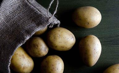 An in-depth guide to choosing potatoes