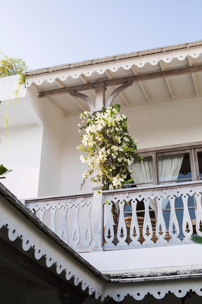 "Turn your balcony into a Mediterranean-style oasis by training [bougainvillea](https://www.homestolove.com.au/bougainvillea-9929|target=""_blank"") to grow across the beams or railing. The small-growing hybrid Bambino series has obtained a well-earned reputation as a high-quality plant, giving bougainvilleas a new place in small gardens or balcony areas."