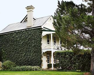 Vine covered exterior of Essington Park in Oberon