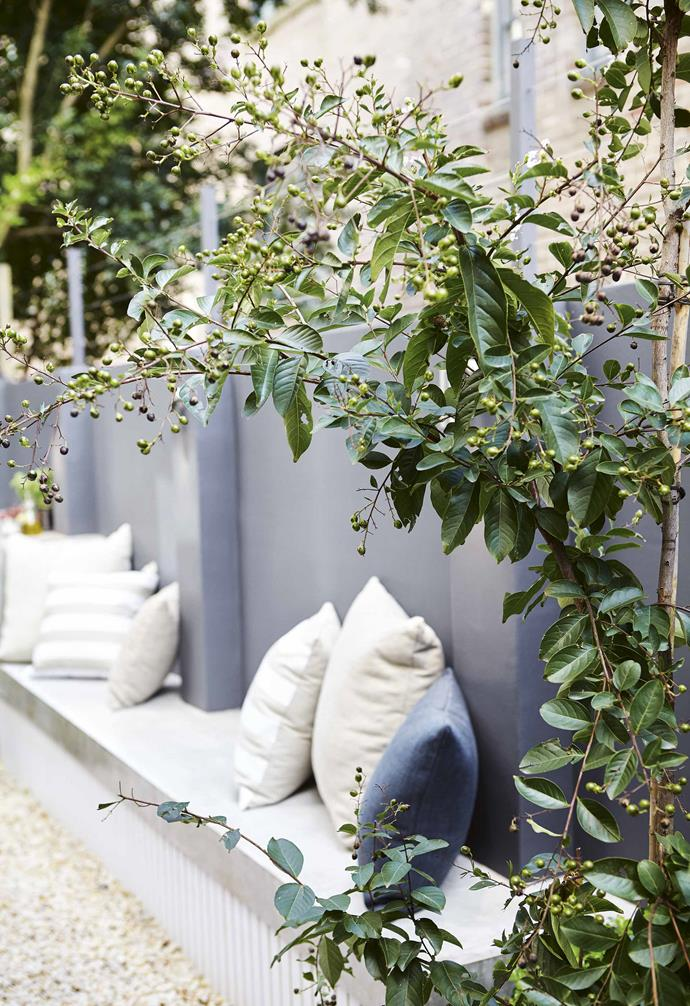 """Beside the courtyard is the [front entrance](https://www.homestolove.com.au/entry-garden-ideas-20236