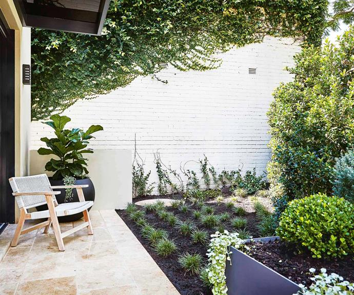 An inner-city courtyard garden that's perfect for entertaining