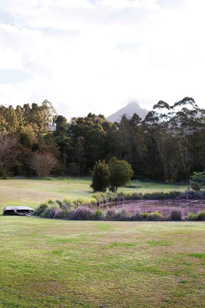 The view from the restaurant over the dam to Mount Warning.