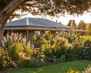 A garden of hardy plants that can survive drought and frost