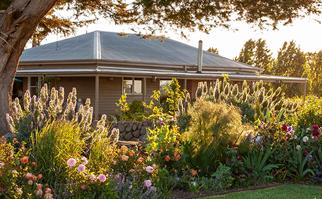 Country home with wraparound verandah visible through cottage garden with manicured lawn.