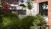 Landscaping costs: from pathways to plants