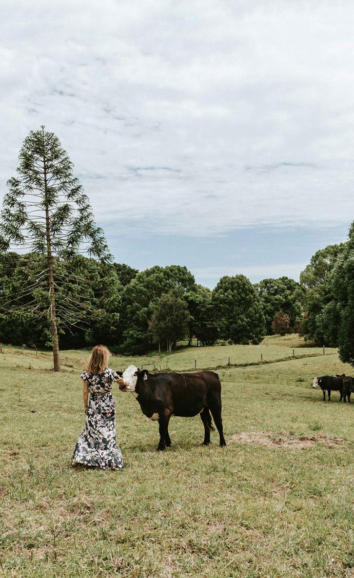 Caroline stops to greet the cows that visit from a neighbouring property.