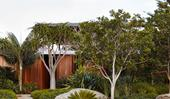 A robust coastal garden by William Dangar