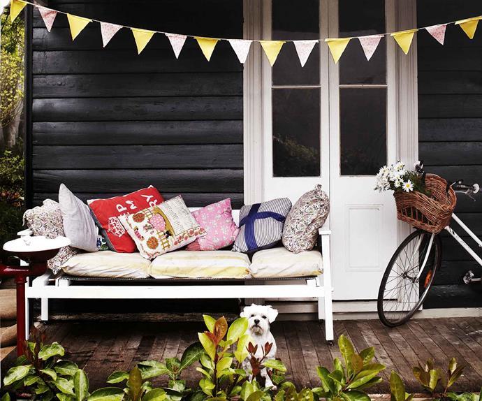 malteser dog on a cottage verandah