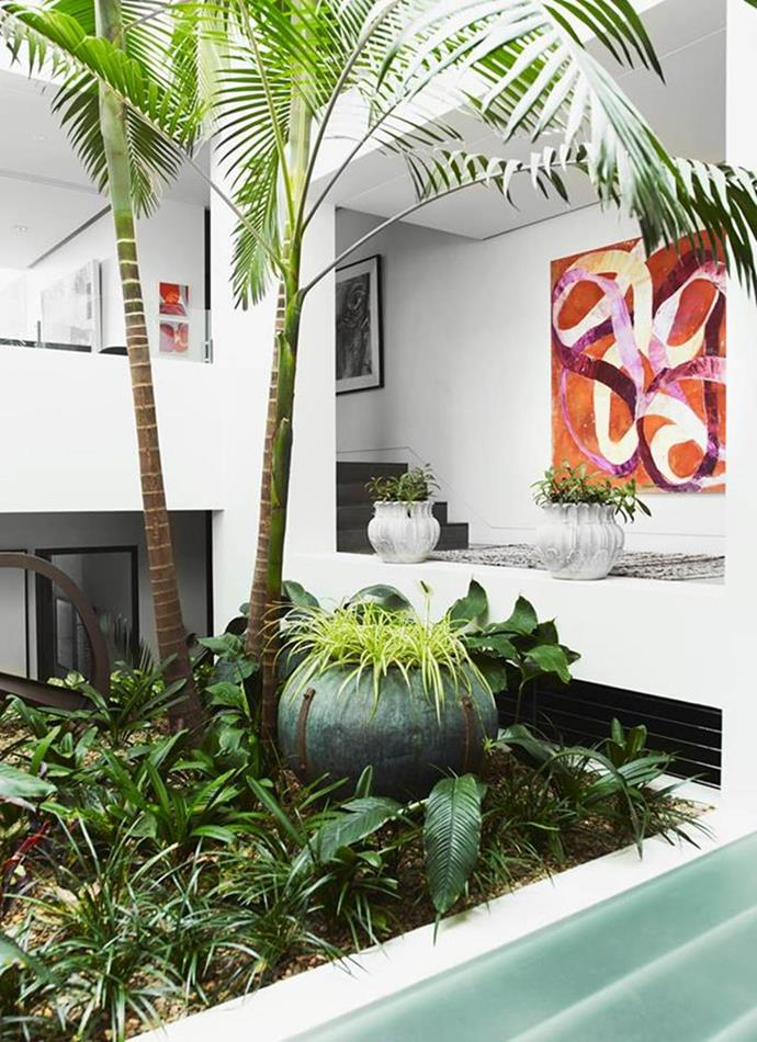 Luscious plantings by Dangar Barin Smith are found throughout this warehouse converted into a sophisticated family home. The greenery gives the house a tropical feel. Artwork by Ildiko Kovacs. Photographer: Prue Ruscoe | Stylist: Alexandra Gordon