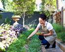 Expert tips for setting up a sustainable backyard garden
