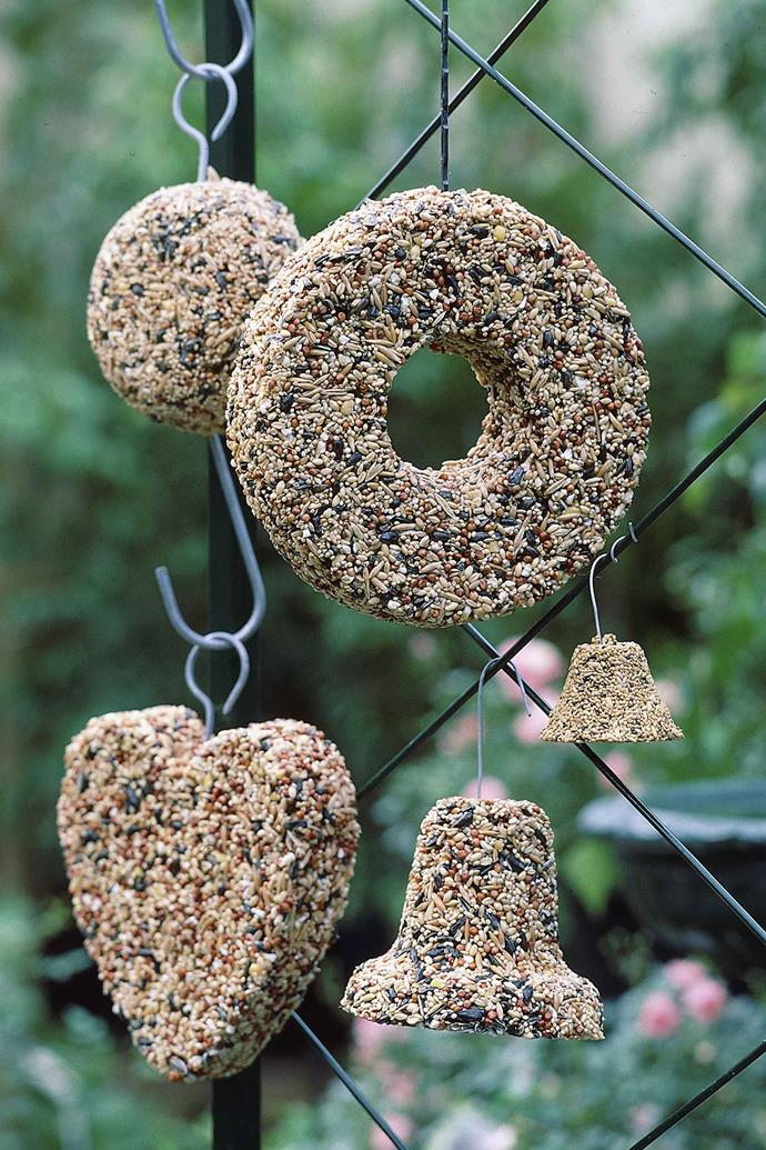 An array of hanging bird seed decorations.