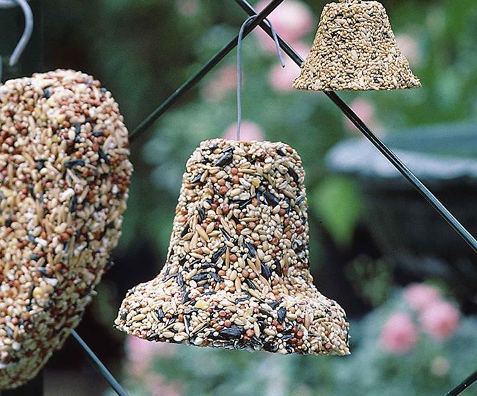 Bird seed bell hanging from a fence
