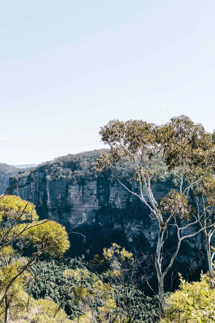 The population of the Blue Mountains almost 79,000 and there are over 5500 businesses in the region. This is predicted to grow by 4.67 per cent from 2018 to 2036.