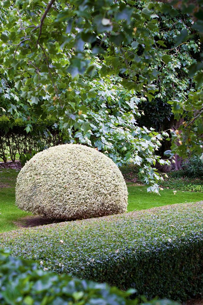 Clipped hedges and topiary herald the grass tennis court.