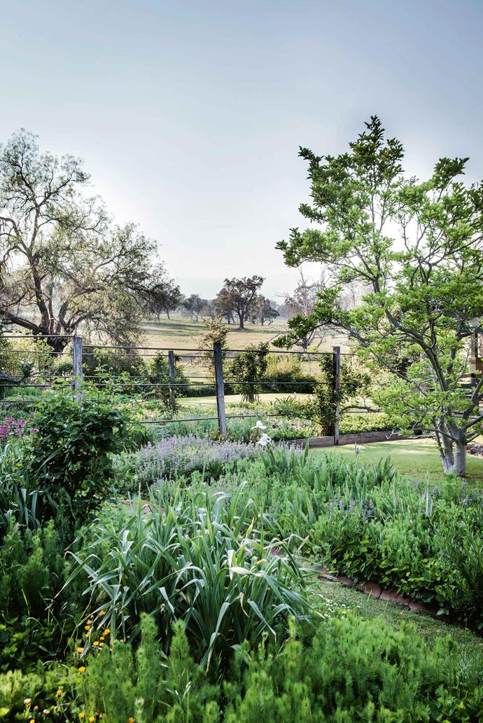 "When the previous owners, Peter and Judy Howarth, bought it from the Payne family in 1987, the garden was overgrown and they worked to restore it, uncovering rows of stone-edged garden beds, exquisite stone walls and many trellises. A self-seeded [garlic plant](https://www.homestolove.com.au/how-to-grow-garlic-9468|target=""_blank"") sits among beds of love-in-a-mist, catmint, irises and grape hyacinths."