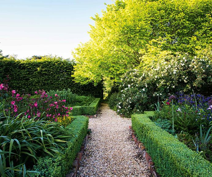 "A golden elm and 'Frühlingsgold' roses light up a corner of the parterre. The [kitchen garden](https://www.homestolove.com.au/how-to-grow-a-biodynamic-farm-at-home-3017|target=""_blank"") brings year-round pleasure and productivity. ""We're out here all the time,"" says Andrew, running his eye down the rows of raspberries and gooseberries, and neat beds bristling with artichokes, asparagus, leeks, snow peas, broad beans, King Edward potatoes and strawberries. And more roses, some climbing rustic tripods. ""Here's 'Rose de Rescht', 'La Reine Victoria' and Rosa chinensis 'Mutabilis',"" Andrew says. ""I pick them all and love having flowers in the house."""