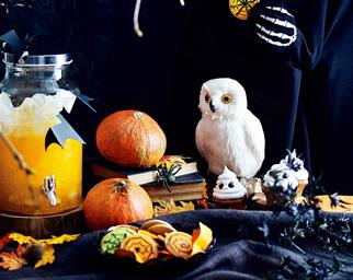 Halloween decorations pumpkins, owl and drinks dispenser