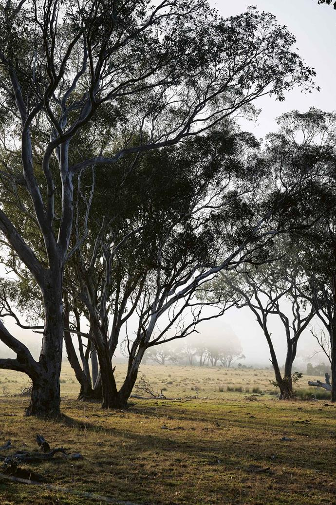 Experts are predicting a prolonged bushfire season due to drought conditions around the country.