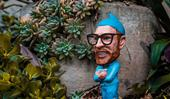 Amazon's garden store is a 'gnome brainer' for savvy shoppers