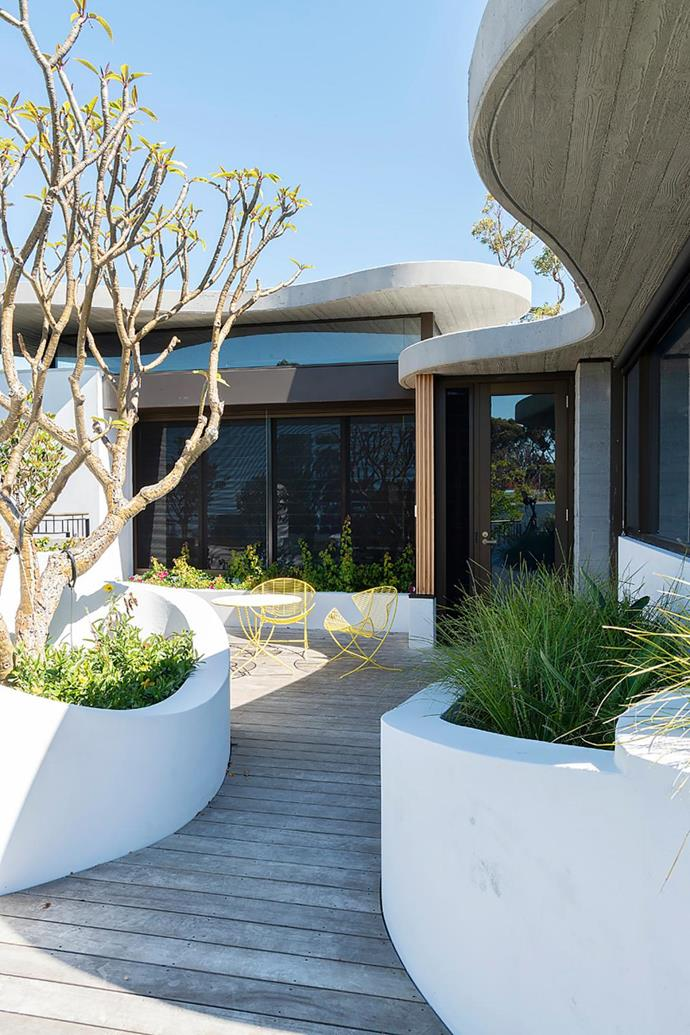"Briefed to design a ""grey concrete house"", architect Neil Cownie punctuated the monochrome palette of this Perth project with curvilinear forms and a rooftop garden. *Photograph Jody D'Arcy.*"