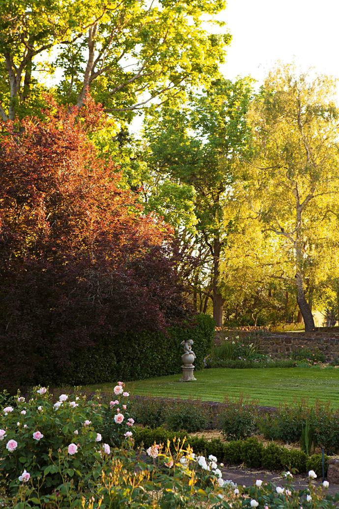 "Some of Edna Walling's signature design features include stonework, and plantings of Prunus and silver birch, as seen in this view from the [rose garden](https://www.homestolove.com.au/romantic-rose-gardens-13868|target=""_blank"")."