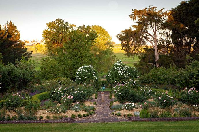 "Standing on the [verandah](https://www.homestolove.com.au/country-verandahs-13365|target=""_blank"") gives an elevated view of the rose garden — two white lilacs border the far end, and signal the descent to the lower levels of the garden and the paddocks beyond."