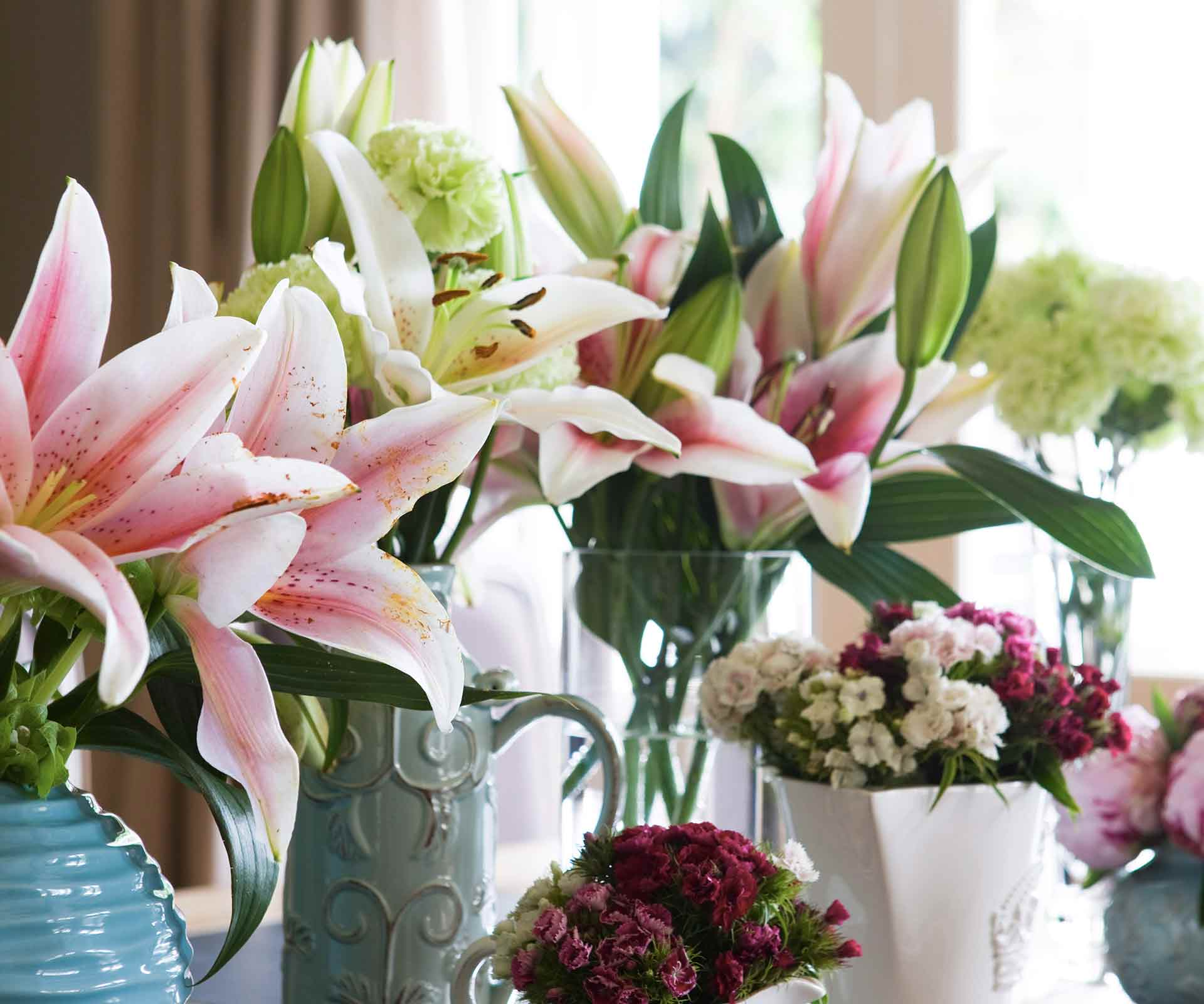 How to grow lilies in gardens and pots