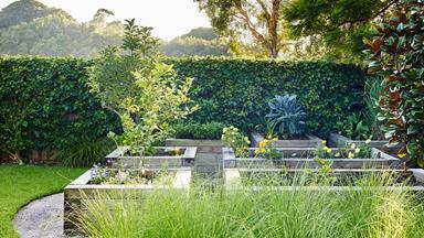 12 expert summer gardening tips