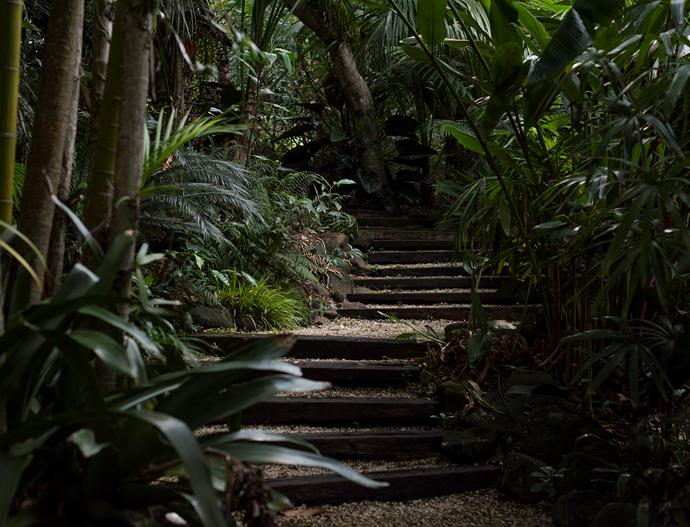 Hardwood and gravel paths wind through the subtropical plantings.