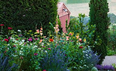 8 charming cottage garden design ideas