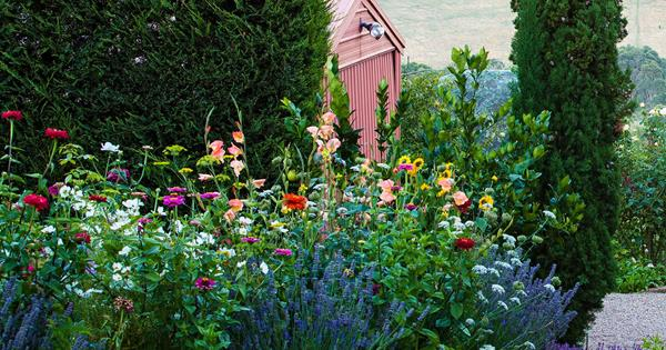 8 Charming Cottage Garden Ideas In Pictures Homes To Love