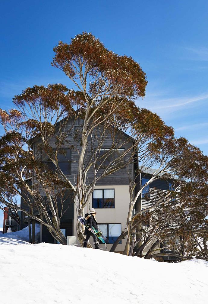 **In the snow** In Victoria's Mount Hotham one family's luxurious winter retreat was renovated just in time for the winter season. The project was pushed through in conjunction with its sister property next door, which was similarly updated in a functional yet warmly welcoming style.