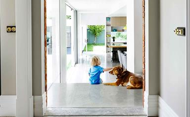 6 stylish ways to pet-proof your home